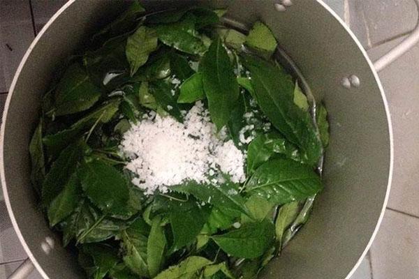 Xông vùng kín cùng với lá trà xanh và muối giúp thu hẹp cô bé